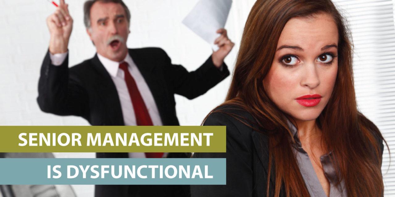"""Senior management is dysfunctional"""